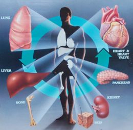 Transplant de organe